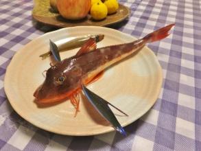 久しぶりに近所の浜へお散歩に行きました♪釣り人さんからおすそわけ\(^o^)/赤いお魚~ほうぼう&ワカサギの様なミニキス♪2014.12.10