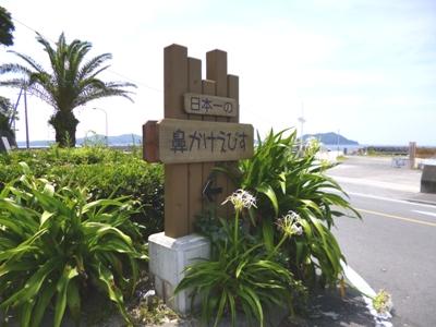 浜島 海岸道路沿い