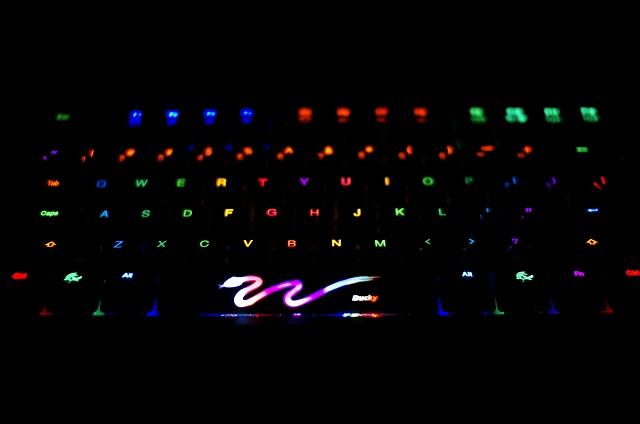 DuckyShine3-DayDream_07.jpg