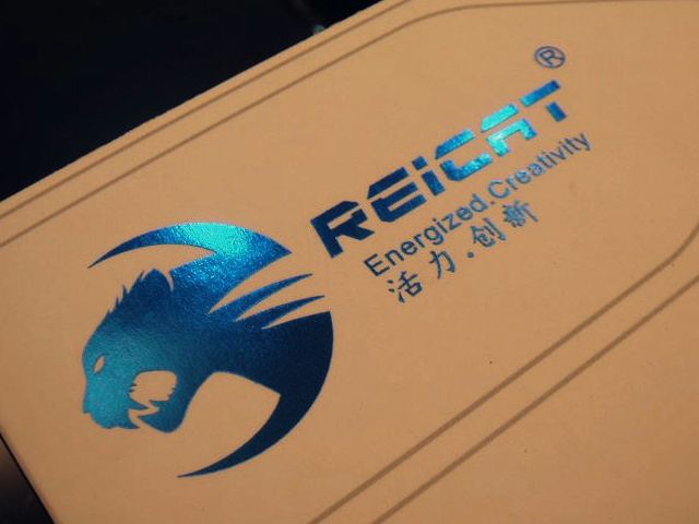 REICAT_Mouse_01.jpg