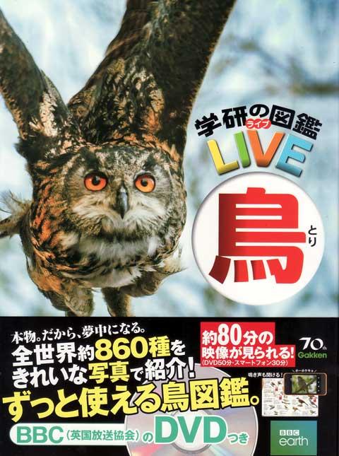 live-tori201412021.jpg